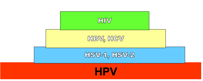 diagram_table_hpv